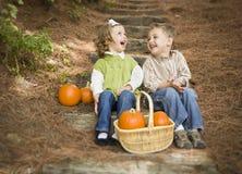 2 дет на деревянных шагах с тыквами Whisperi Стоковое Фото