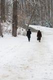 2 дистантных люд гуляя в парк Snowy. Стоковые Фотографии RF