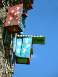 2 дома птицы цвета Стоковые Фото