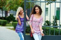 2 друз женщины Стоковые Фото