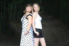 2 друз приближают к тоннелю Стоковое фото RF