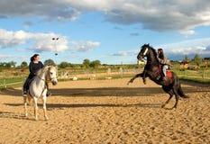 2 женщины лошадей Стоковая Фотография RF