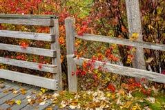 2 загородки соединяют с листьями осени и валом Стоковые Фото