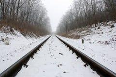 2 замороженных следа Стоковые Фото