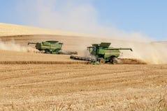 2 зернокомбайна пшеницу в северозападе Стоковые Фотографии RF
