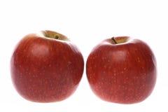 2 зрелых красных яблока Стоковые Фотографии RF