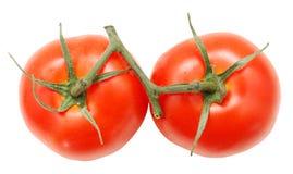 2 зрелых томата Стоковые Изображения RF
