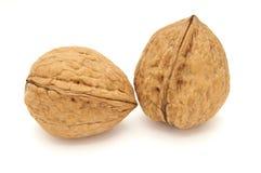 2 изолированного грецкого ореха Стоковое Изображение RF