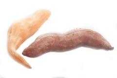 2 изолированного сладкого картофеля Стоковые Фотографии RF