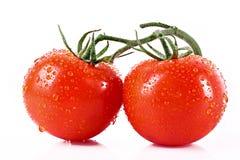 2 изолированного томата Стоковые Изображения