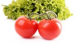 2 изолированных томаты и салата Стоковая Фотография RF