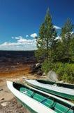 2 каня вышли на банк песка, Karelia, Россию Стоковая Фотография