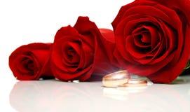2 кольца wedding стоковое изображение rf