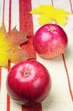 2 красных яблоки и листь желтого цвета Стоковые Изображения RF
