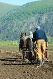 2 люд и лошадь стоковые фотографии rf