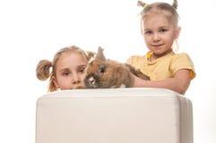 2 маленькой девочки играя с зайчиком пасхи на белой предпосылке Стоковые Изображения RF