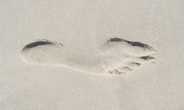 2 ноги Стоковое фото RF