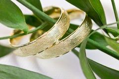 2 обручального кольца золота Стоковые Фотографии RF