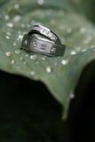2 обручального кольца Стоковое Изображение