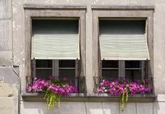2 окна Стоковое Изображение