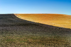 2 покрашенных поля Стоковое Фото