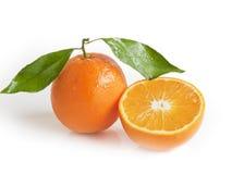 2 померанцовых мандарина Стоковое Изображение