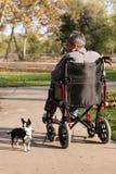 2 постаретая кресло-коляска середины человека Стоковые Фотографии RF