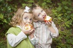 2 прелестных дет есть яблока снаружи Стоковая Фотография RF