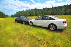 2 престижных автомобиля на природе Стоковая Фотография