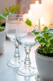 2 пустых стекла вина год сбора винограда Стоковые Изображения RF