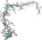 2 розовых лозы бесплатная иллюстрация
