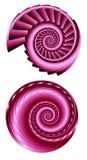 2 розовых спирали 2 фрактали Стоковое Изображение