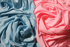 2 розы Стоковая Фотография RF