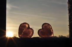 2 сердца Стоковое Изображение RF