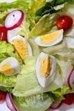 2 серии салата Стоковые Изображения RF