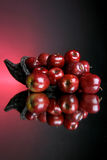 2 серии яблок стоковые фото