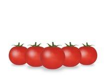 2 томата Стоковое Изображение