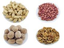 2 установленного семени закусок nuts Стоковые Фото