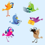 2 установленной птицы Стоковое Изображение