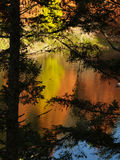 2 цвета осени мирного Стоковые Фотографии RF