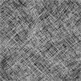 2 черных нашивки сетки белой Стоковая Фотография RF