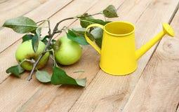 2 яблока с листьями на деревянной поверхности Стоковые Изображения