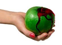 2 яблоко - зеленый цвет Стоковая Фотография RF