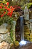 2 японца сада Стоковая Фотография