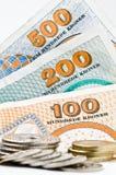 2货币丹麦 免版税库存照片