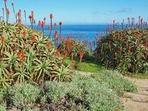 2 11 святилище Монтерей 22 заливов Стоковые Изображения RF