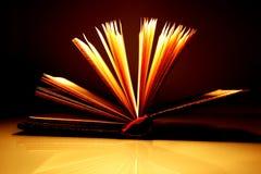 книга 2 открытая стоковая фотография rf