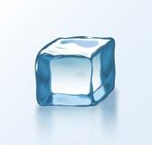 传染媒介冰块2 图库摄影