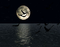 鸟2 免版税库存图片