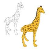 Жираф 2 цепей Стоковые Изображения RF